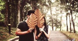 بالصور صور حب رومانسية , بطاقات مكتوب عليها عبارات معبرة 4441 8 310x165