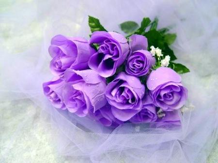 صورة باقات ورد رائعة , صور مختلفة ومتميزة لمجموعة ازهار رائعة