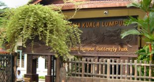 حديقة الفراشات في ماليزيا , صور في الاماكن السياحية النادرة