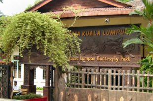 صوره حديقة الفراشات في ماليزيا , صور في الاماكن السياحية النادرة