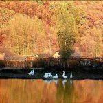 الخريف في سويسرا , طبيعة مدهشة ساحرة