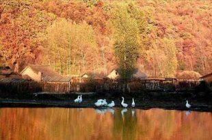 صوره الخريف في سويسرا , طبيعة مدهشة ساحرة