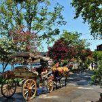 جزيرة الاميرات بتركيا , اماكن سياحيه فوق الخيال بجزيره الاميرات