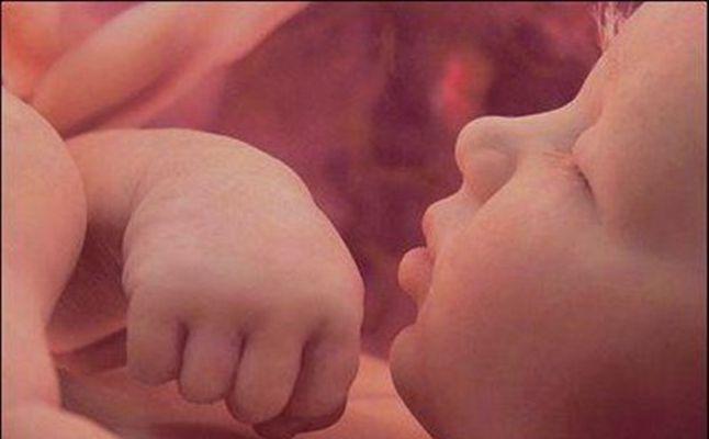 صورة جنين في بطن امه , مراحل تطور الجنين داخل بطن امه بالصور