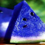 صور البطيخ الازرق , تعرف على البطيخ الازرق