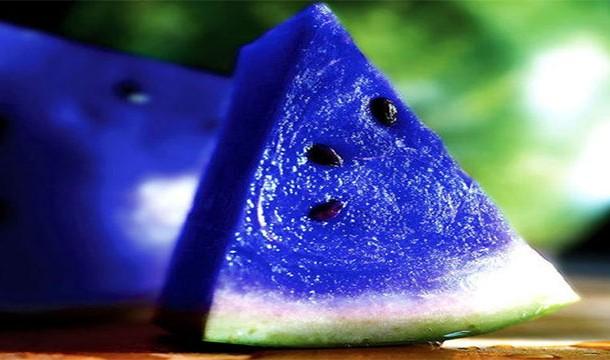 صورة صور البطيخ الازرق , تعرف على البطيخ الازرق
