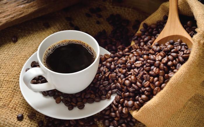 صوره اغلى قهوة في العالم , روث الفيلة من اغلى انواع القهوة في العالم