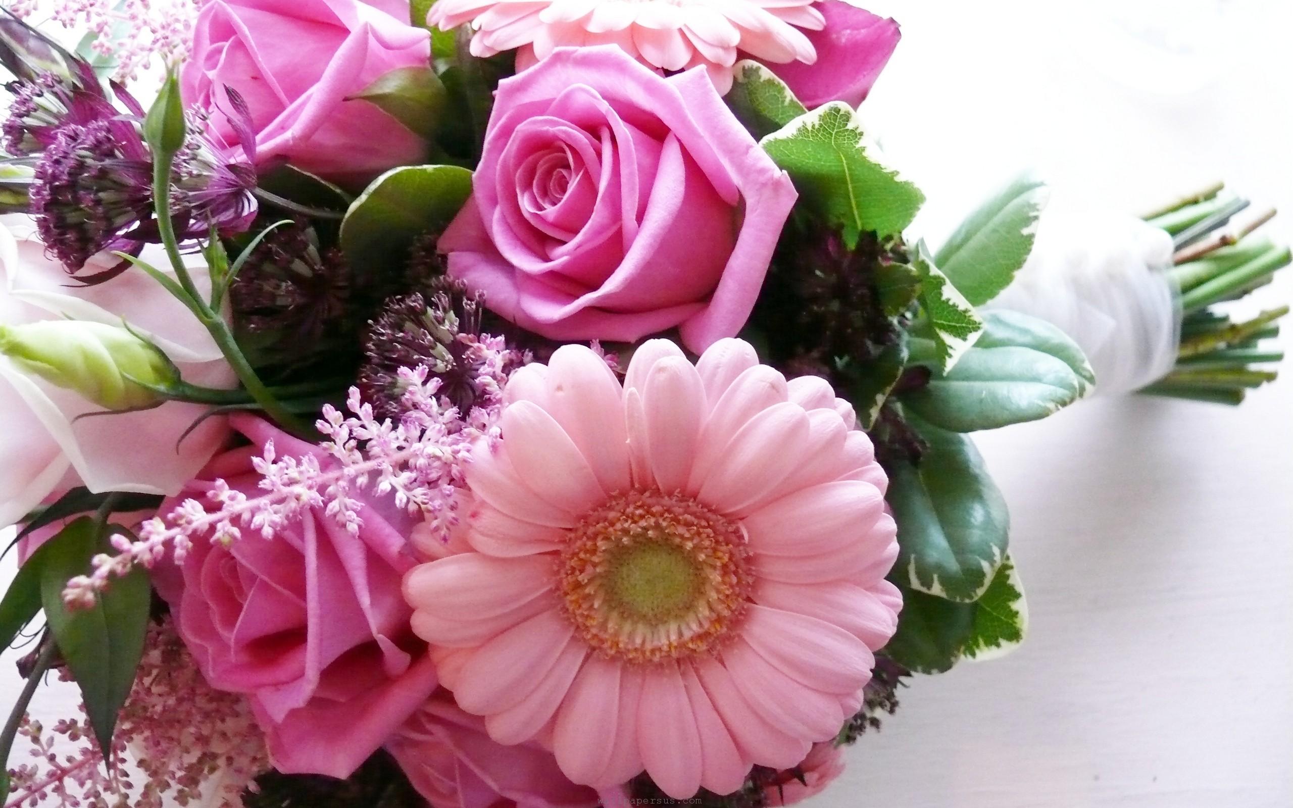 صورة صور زهور رائعة , الزهور وجمالها ومحبيها