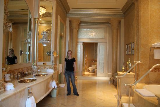 صور لقصر الامارات قصر الامارات لقضاء احلى الاوقات