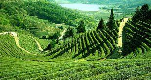 مناظر طبيعية من الهند , اماكن سياحيه فوق الخيال بالهند
