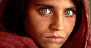فتاه افغانيه تبهر العالم بجمال عينيها , شربات جولا اشهر صورة في العالم