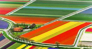 اجمل الاماكن السياحيه في هولندا , اهم المناطق السياحية بهولندا