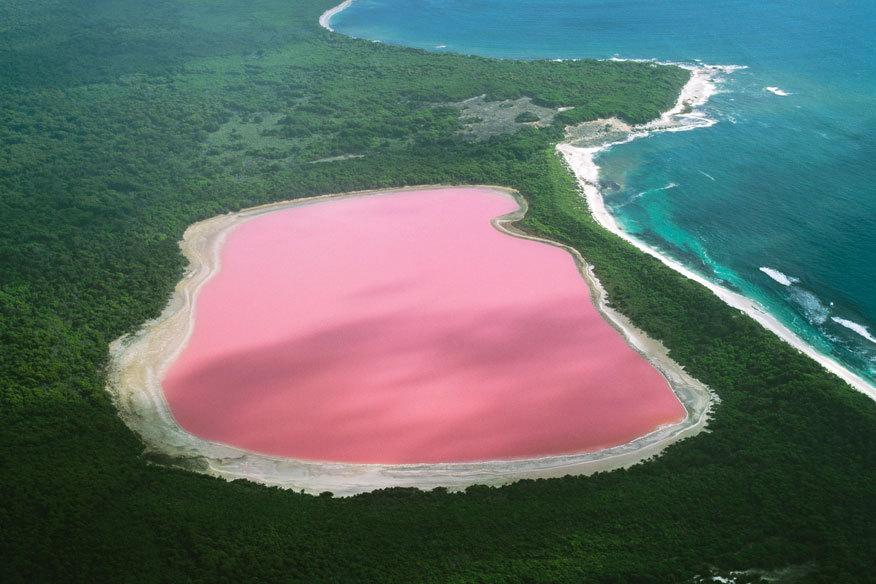 صورة البحيره الورديه في استراليا , صور لمياه وردية بقارة استراليا