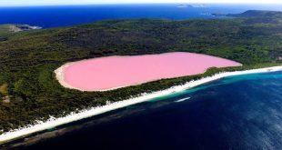 البحيره الورديه في استراليا , صور لمياه وردية بقارة استراليا