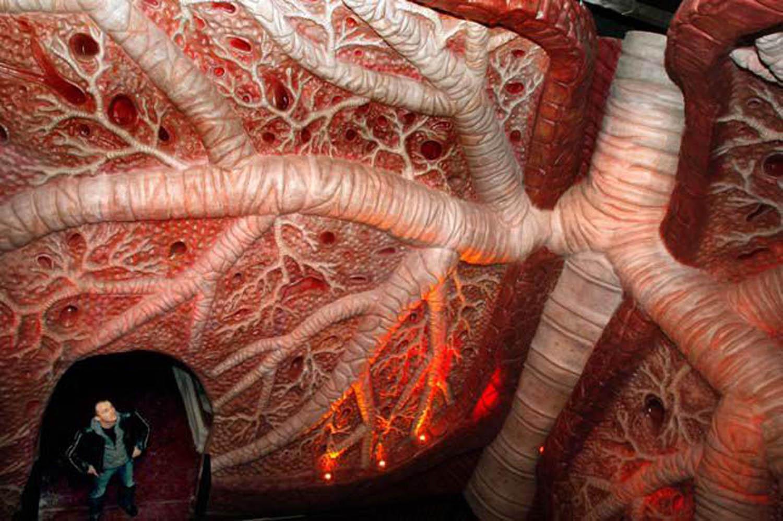 صوره متحف لتفاصيل جسم الانسان في هولندا , متحف هولندى يعرض اجزاء الجسم