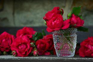 صورة اجمل تشكيلة زهور وردة بالعالم , اشيك بوكيه ورد في العالم