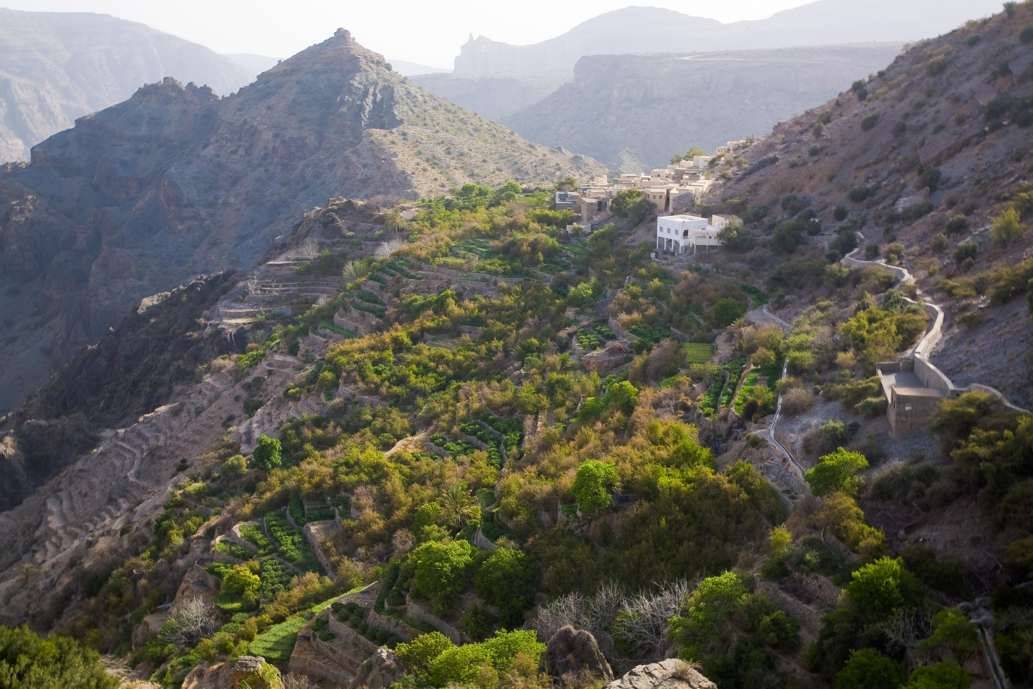 بالصور الجبل الاخضر سلطنة عمان , صور لاشهر جبل في عمان 4013 1