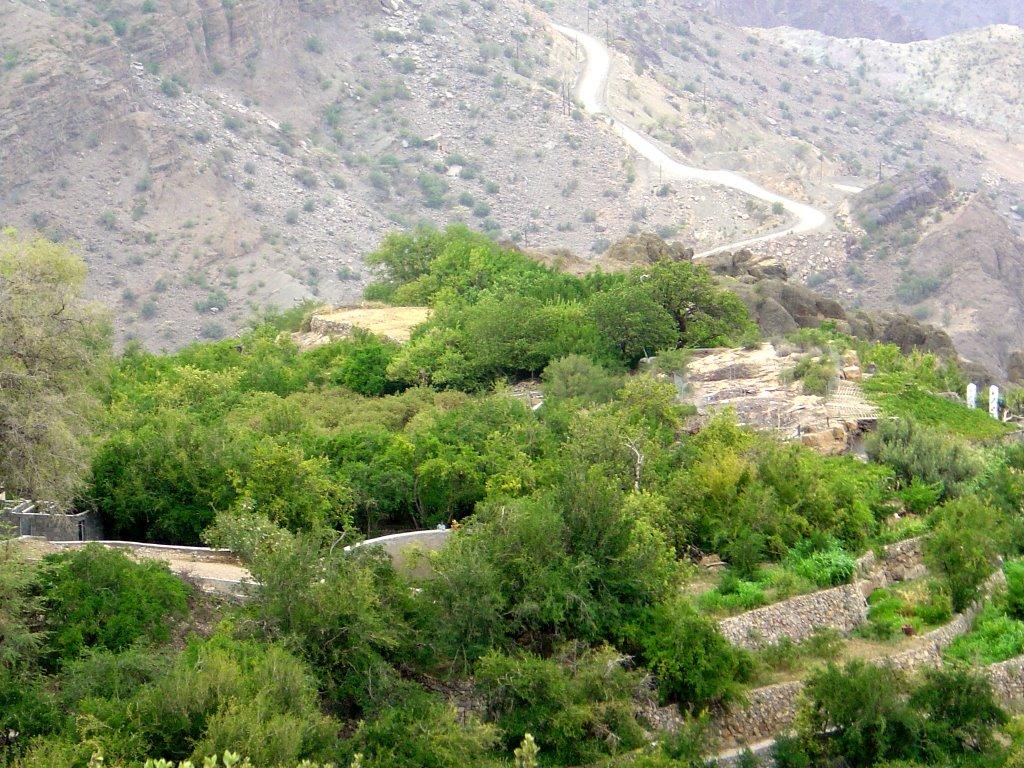 بالصور الجبل الاخضر سلطنة عمان , صور لاشهر جبل في عمان 4013 4