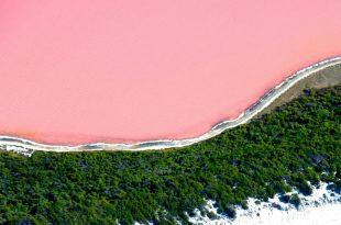 صورة البحيرة الوردية في استراليا سبحان الخالق , غرائب حول العالم