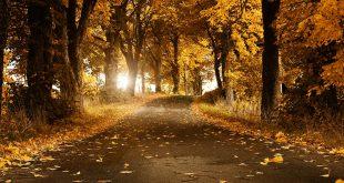 بالصور صور طبيعة جميلة جدا , خلفيات لاماكن ساحرة 10510 10 310x165