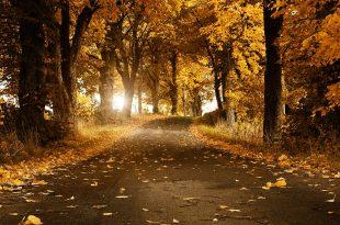 صوره صور طبيعة جميلة جدا , خلفيات لاماكن ساحرة