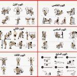 حركات كمال الاجسام صور تمارين كمال الاجسام , اهم رياضة للجسم