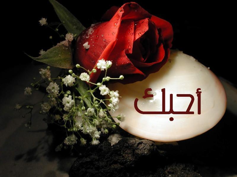 صورة صور جميلة جدا للحب , احلي بطاقات معبرة عن الرومانسيه