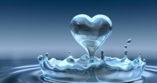 صورة اجمل الصور لقطرات الماء , صور رقيقة لقطرات الندى