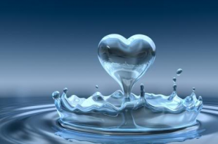 صور اجمل الصور لقطرات الماء , صور رقيقة لقطرات الندى