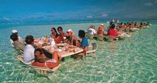 اغرب المطاعم في العالم , وانواع مختلفه من الاكلات والمشروبات