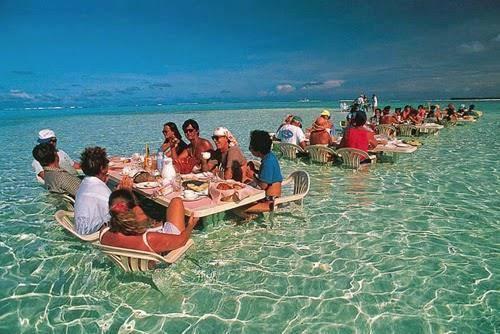 صوره اغرب المطاعم في العالم , وانواع مختلفه من الاكلات والمشروبات