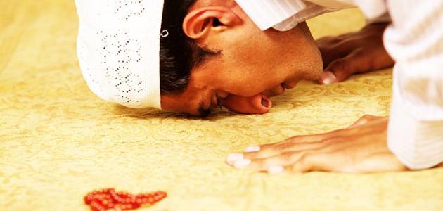 صوره الخشوع في الصلاة , فوائدها وثوابها للمسلم المؤمن