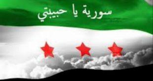 صور الثورة السورية , ثورة انهت وطن