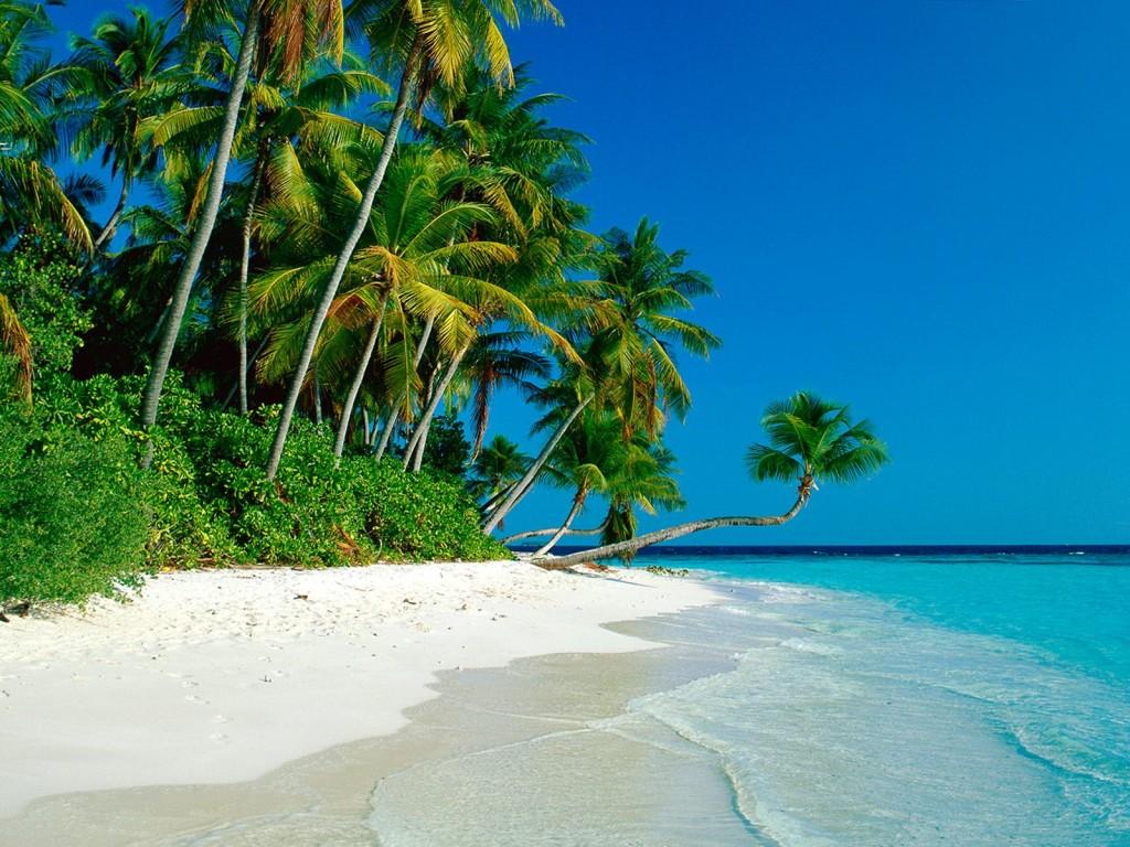 صوره اجمل شاطئ في العالم , الطبيعه الساحرة