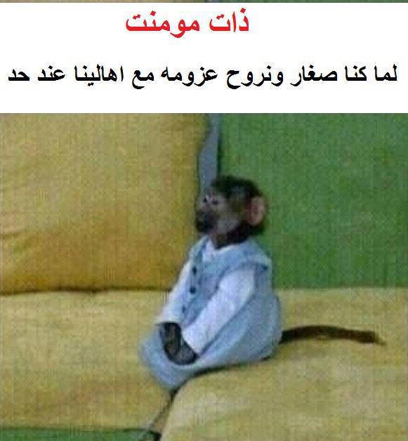 بالصور صور تعليقات ضحك , احدث صور مضحكه عشانك 11275 10