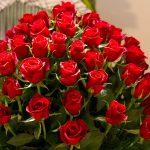 باقات من الورد , اجمل صور للورود الجميله