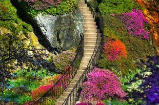 صورة اجمل صور من الطبيعه , مناظر طبيعية خلابة