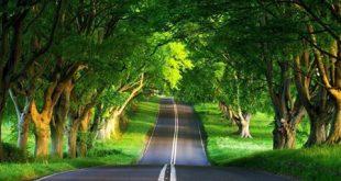 اجمل الطرق في العالم , من جمالها تنسى القيادة