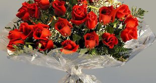 صورة اجمل باقات الورد اجمل الورود , لغة لا يعلمها الكثير