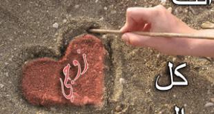 اجمل الصور الرومانسية للمتزوجين , تجمع بين الحب والاحترام