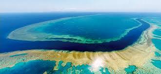 بالصور الحيد المرجاني العظيم , من عجائب استراليا المائيه unnamed file 135