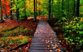 صورة الصور مناظر الطبيعة , الطبيعة الخلابة