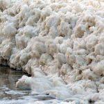صور زبد البحر , صور من الطبيعة الخلابة
