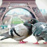اجمل اللحظات الرومانسية , تشحن القلب وتجدد الامل