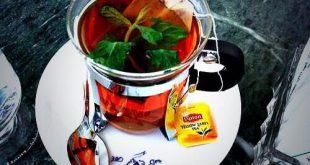 صور كوب شاي , مجموعه متنوعه من اشهى واجمل صور لكوبيات الشاى