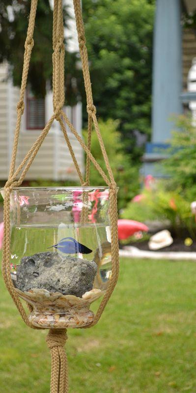 صوره احواض سمك الزينة , مناظر خلابة من حوض الاسماك