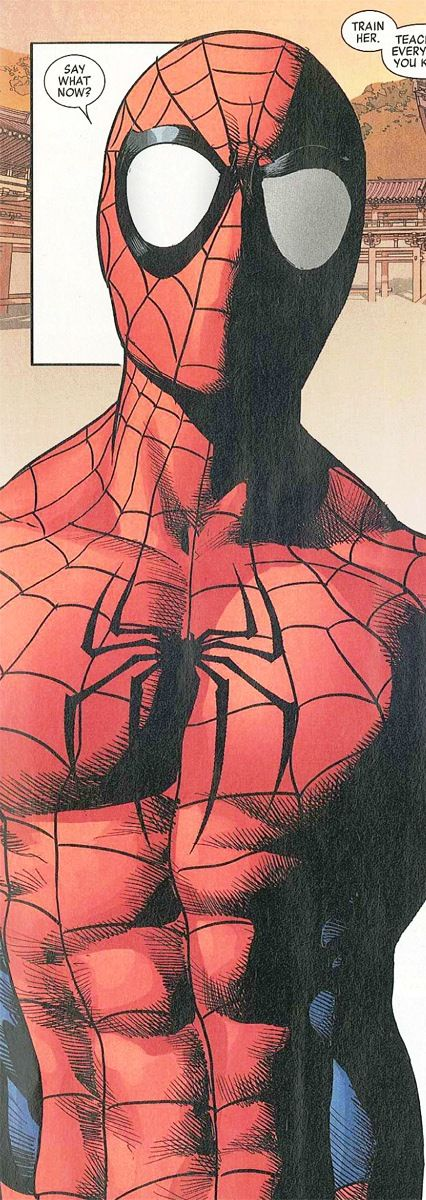 صوره سبايدر مان الحقيقي , شخصية الانمي للفتى العنكبوت