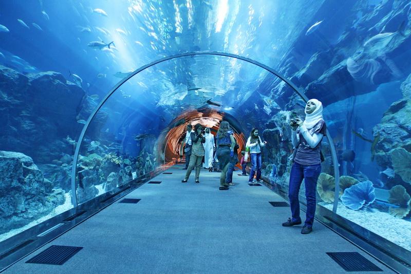 صوره صور حوض سمك , اكبر احواض سمك عملاقة ومطاعم