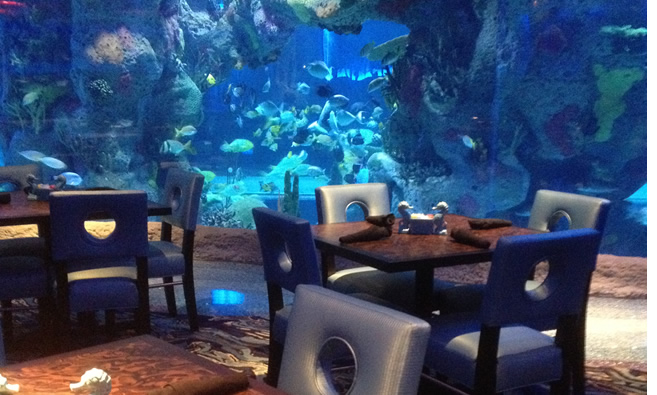 بالصور صور حوض سمك , اكبر احواض سمك عملاقة ومطاعم 10689 3
