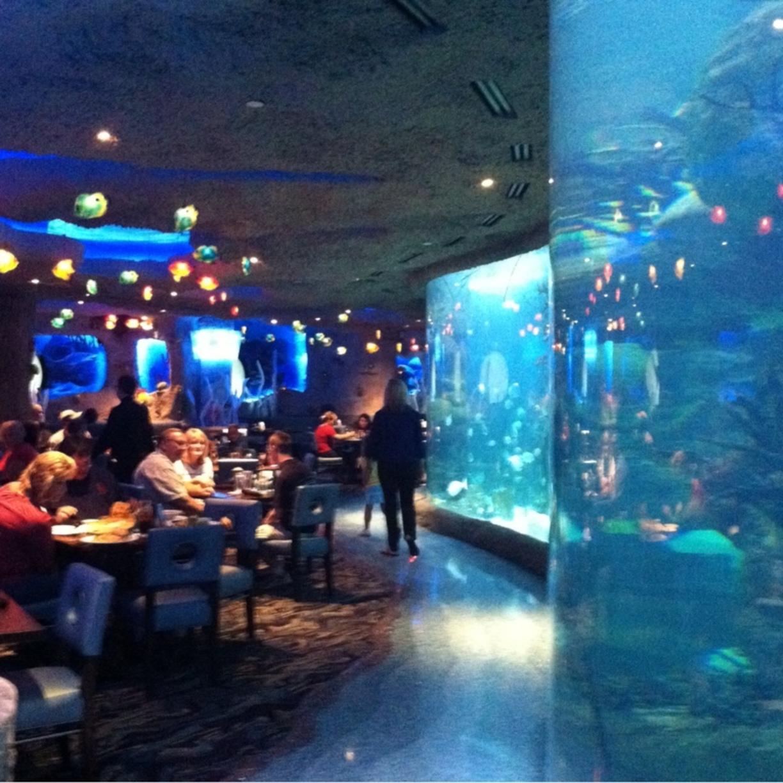 بالصور صور حوض سمك , اكبر احواض سمك عملاقة ومطاعم 10689 4